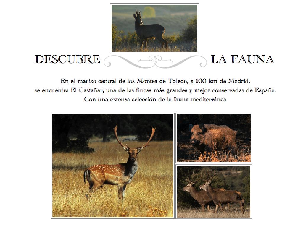 pdf castañar.015-001