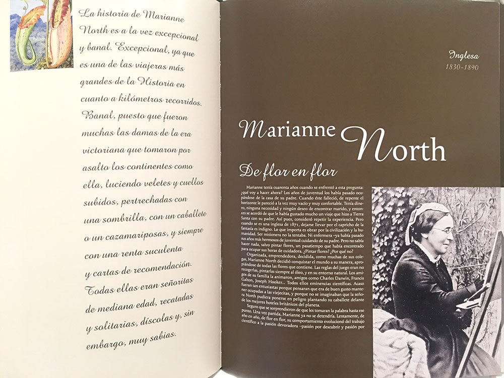 marianne-north