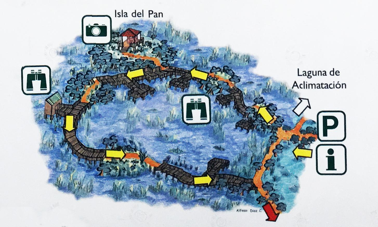 recorrido-isla-del-Pan-Daimiel